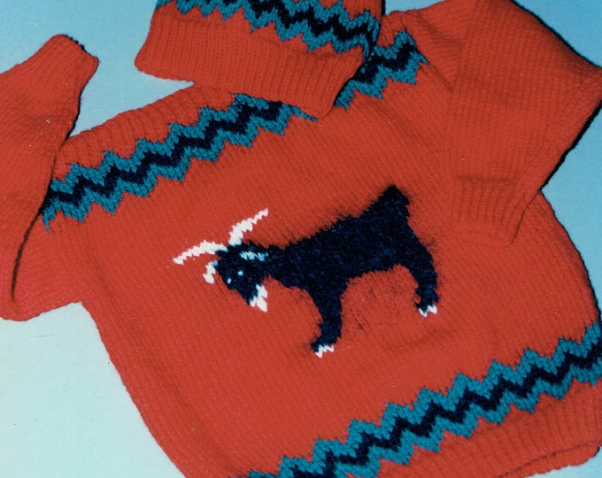 Country's Child Bucky the goat child's knit boat neck pullover