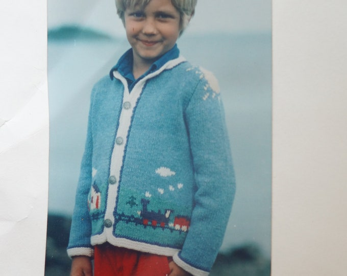 Sweater kit childs country scene all yarn, buttons and pattern included free shipping