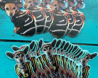 Mexican chihuahua sticker