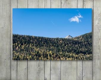 Landscape Photography,Forest Wall Art,Mountain Wall Art,Autumn,Minimalist Art,Wall Decor,Home Decor,Canvas Art,Nature,Large Wall Art