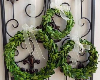 "CHOOSE 6"" 8"" OR 10"" Small Mini Preserved Boxwood Christmas Wreath with Sheer Ribbon-Year Round Wreath-Farmhouse Decor-Christmas Decor"