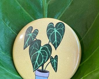 Plant Lapel Pin Anthurium Propagating Anthurium Clarinervium Enamel Pin  Potted Plant Pin Plant Lover Crazy Plant Lady