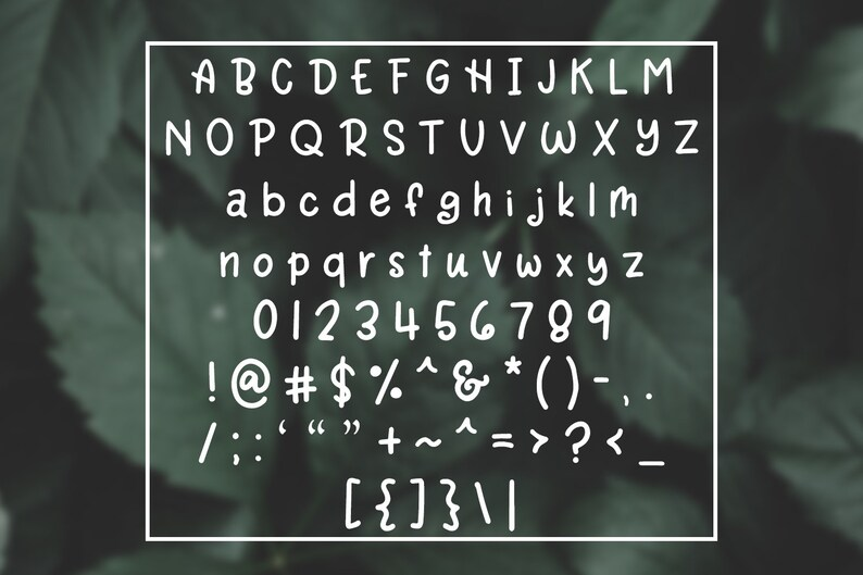 Rain Lily Handwritten Font / Simple Font / Sans Serif Font / Hand Lettered  Font / Hand Written Font / Playful Font / Bold Font / Thick
