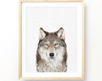Wolf Print, Woodland Animal Print, Wolf Poster, Nursery Animal Decor, Nursery Decor, Animal Print, Nursery Animal Print, Boy Gift, Digital