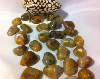 Coprolite (Fossil) Dinosaur Droppings,Grounding Stone,Memory Stone,Clears Blockage Stone,Forgiveness Stone,Understanding Stone,Pet Stone