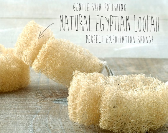 NATURAL EGYPTIAN LOOFAH • Vegan Exfoliating Natural luffa sponge for skin polishing and scrubbing.