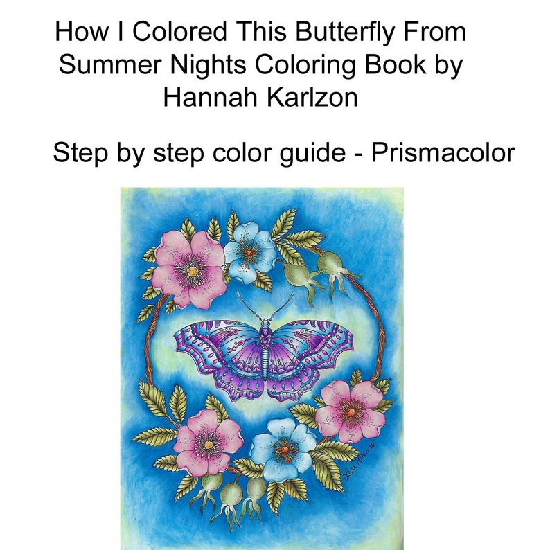 How I Colored The Butterfly Hanna Karlzon Summer Nights Coloring Book Lisa Brando Extreme Coloring Step By Step Coloring Guide