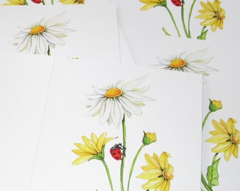 Daisy, yellow daisy, white daisy,  spring, watercolor, sunshine card, print, 5x7 cards 5 pack of cards