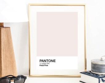 Pantone Color Prints