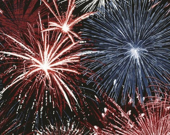 Firework Fabric Timeless Treasures Beautiful Fireworks Sparkling 100 Cotton Fabric By The Yard Tt57