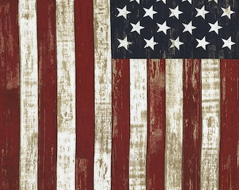 9b58c3863a2 USA patriotic Fabric  Timeless Treasures American Flag Panel 100% cotton  Fabric by the panel 24