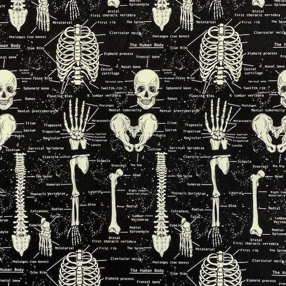 Skeleton Fabric: Timeless Treasures Glow in The Dark Skeleton Black Skeleton ANATOMICAL 100% cotton Fabric by the yard (TT808KK)