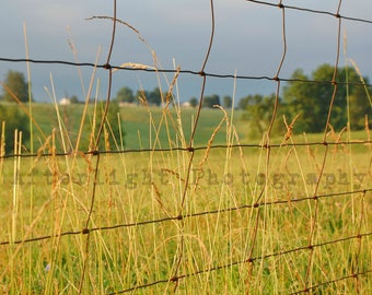 Country Fenceline Photograph, Country Photo, Photography, Landscape, Rustic Photograph,