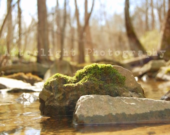 Rock Photography, Nature Photography, Still Life, Peace, Tranquil, Macro Print, Wall Art,