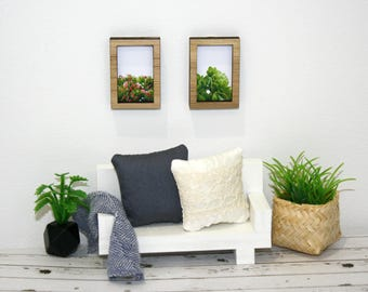 Miniature dollhouse succulent framed artwork pair