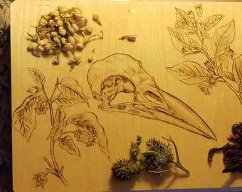 Crow & Botanical Witch Box