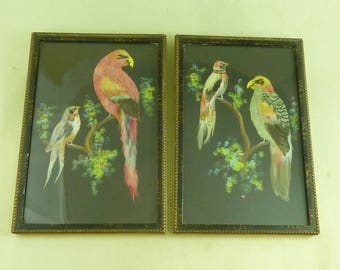 Pair Vintage Exotic Bird Feather Framed Pictures Parrots Folk Art Kitsch