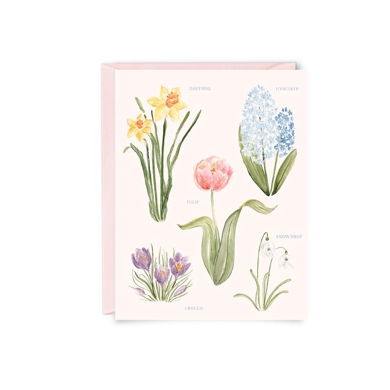 Spring Botanical Notecards  Folded Notecards Floral image 0