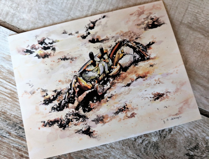 Ghost Crab Note Cards