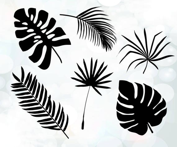 palm leaves cuttable design tree leaves svg tropical svg etsy