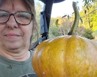 Cherokee Tan Pumpkin Seeds ~~~ RARE~~~