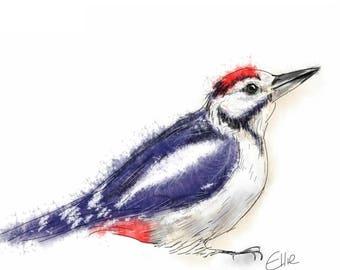 Mounted woodpecker print // woodpecker painting // woodpecker illustration // bird print // bird painting // bird watcher gift // bird gifts