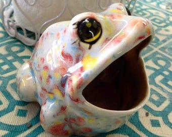 Frog Scrub holder