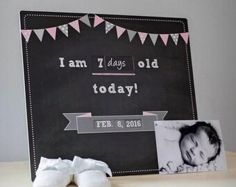 Baby Milestone Photo Prop - Days - Weeks - Months - Age 0 to 12 through 2023 - Nursery Decor - Chalkboard Theme - Pink - Baby Shower Gift