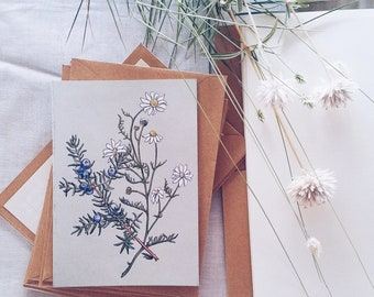 Box Card Set of 10 Blank Botanical Cards and Envelopes
