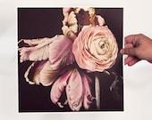 Persian Prince Art Print - Parrot Tulip - Ranunculus - Floral Art - Flower Art - Love Art - Bedroom Art