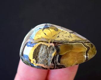 39 x 24 x 6 mm   Rare Simbircite-ammonite with silver pyrite  cabochon