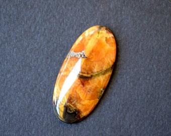 43 x 20 x 6 mm Simbircite -Ammonite  gemstone cabochon