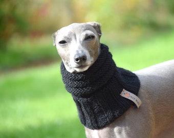 Blue dog scarf Large dog scarf Unisex dog scarf Dog photography Lab dog scarf Dog neck warmer Knit dog scarf Puppy scarf for labrador gift