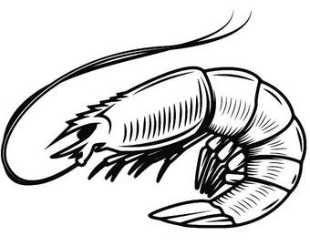 shrimp clipart etsy rh etsy com