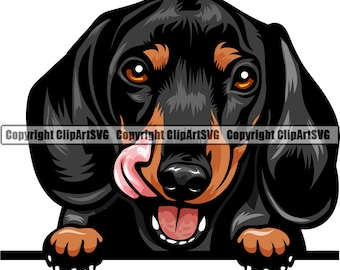 Dachshund Dog; 10 hand drawn dog cliparts png svg eps dxf file tram pet animal companion house pet dog pixel /& vector graphics; hound
