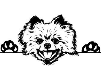 Pomeranian Spitz Svg Etsy