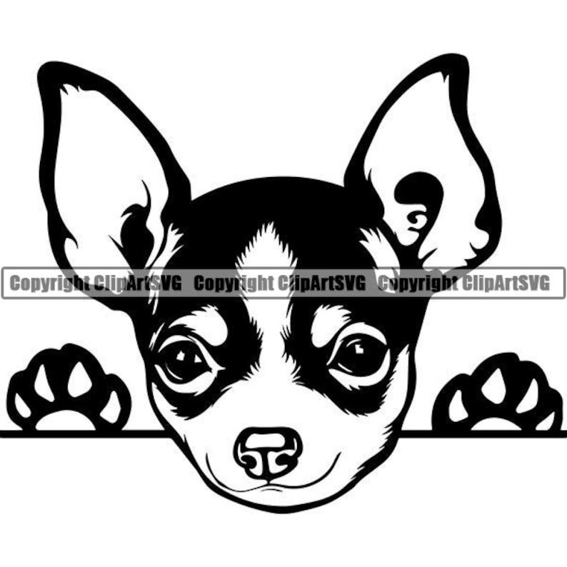 Chihuahua #13 Peeking Dog Puppy Breed K-9 Animal Pet Hound Lap Teacup Mexican Design Logo .SVG .EPS .PNG Clipart Vector Cricut Cut Cutting photo