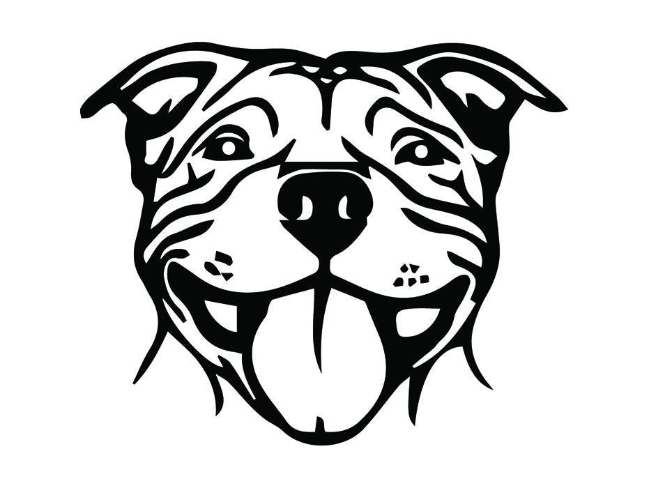 American Pit Bull 1 Pet Terrier Dog Breed K 9 Puppy Mean