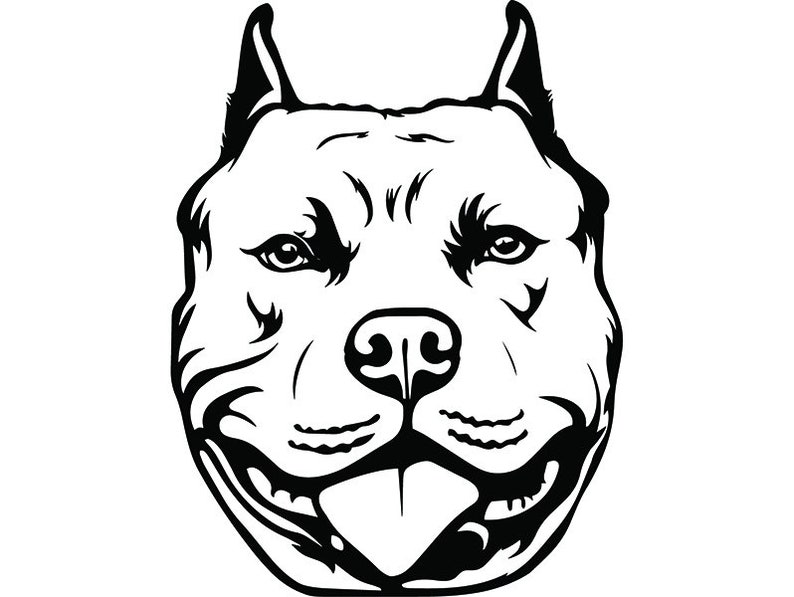 American Pit Bull 30 Happy Smiling Dog Paw Puppy Pet Terrier