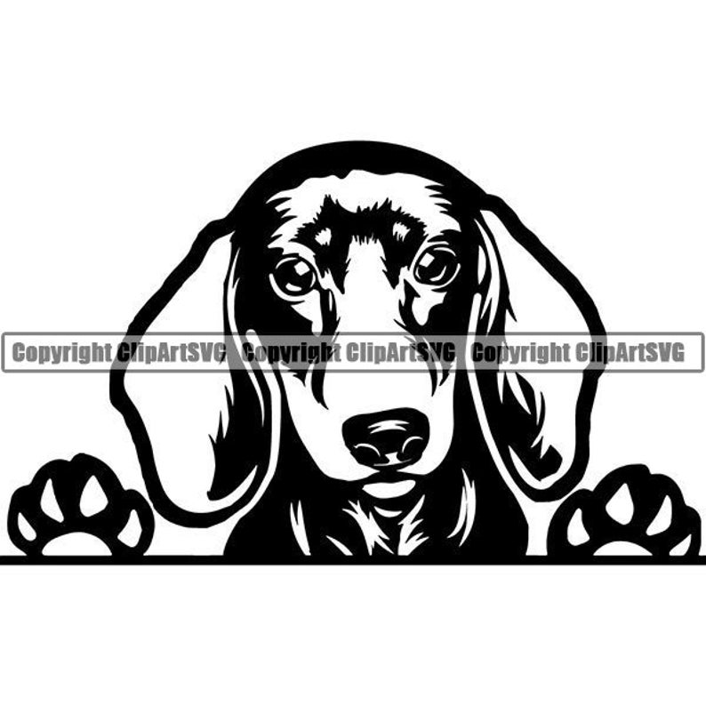 Dachshund Peeking Dog Breed Pedigree Wire Smooth Long Haired K-9 Animal Pet Hound Puppy Hot Logo .SVG .PNG Clipart Vector Cricut Cut Cutting photo