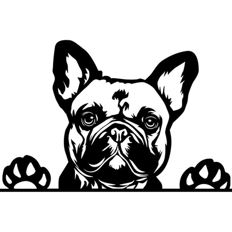 d99c6f3a362 French Bulldog 24 Peeking Smiling Dog Breed K-9 Animal Pet