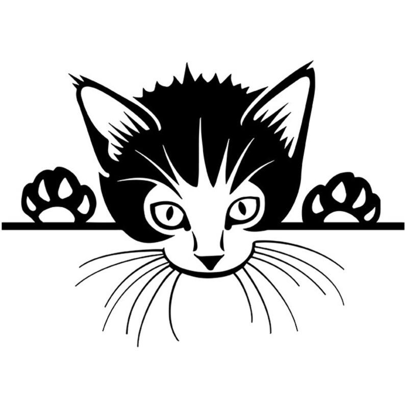 Cat Peeking 5 Animal Tabby Pussycat Paw Domestic Kitten Kitty