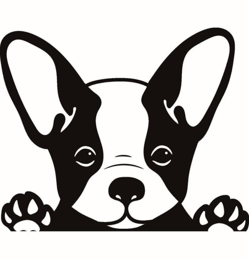 Französische Bulldogge 1 Späht Pfoten Hunderasse K 9 Tier Etsy