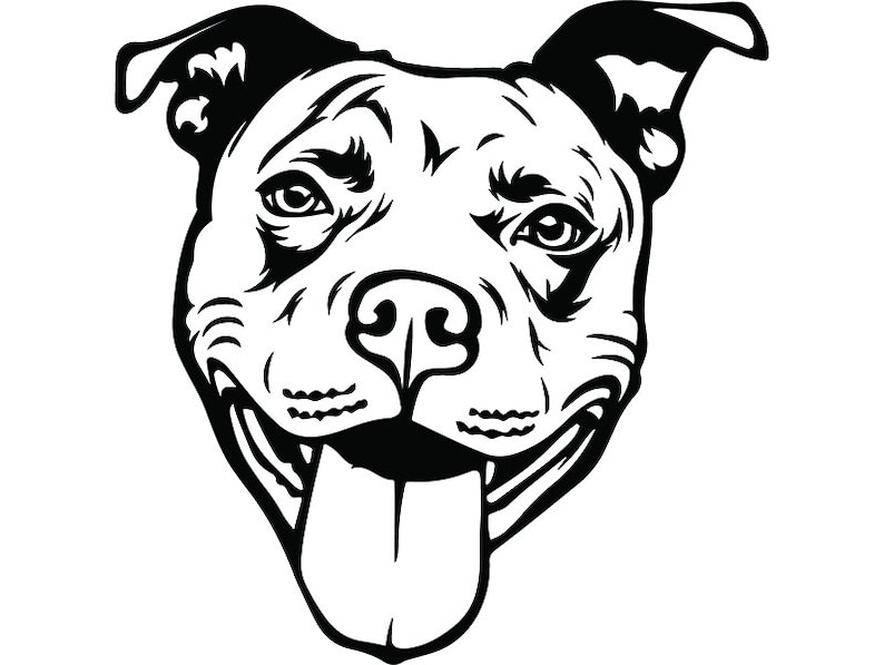 American Pit Bull 38 Happy Smiling Dog Paw Puppy Pet Terrier