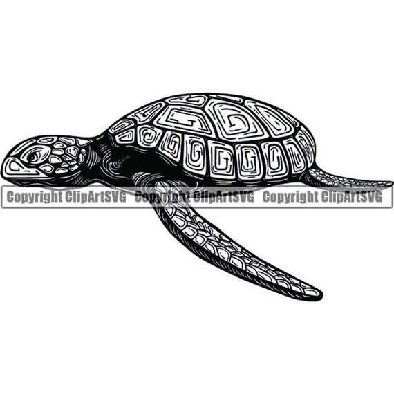 Licenses Products Animals Tribal Spotted Turt Magnet
