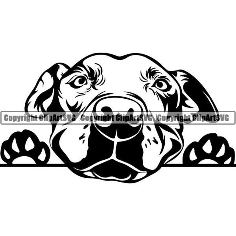 American Pit Bull #21 Peeking Dog Smiling Happy Puppy Paws Pet Terrier  Breed K-9 Canine Logo SVG  EPS  PNG Clipart Vector Cricut Cut Cutting