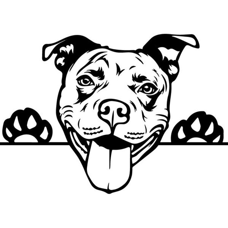 American Pit Bull 37 Peeking Dog Paw Puppy Pet Terrier Breed