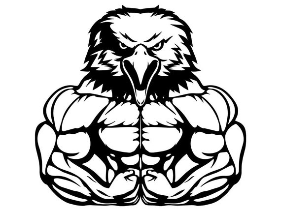 Bodybuilding Eagle 4 Bodybuilder Muscle Fit Weightlifting