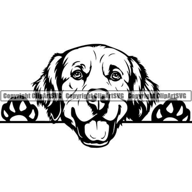 Golden Retriever #6 Peeking Smiling Dog Breed K-9 Animal Pet Puppy Paws Canine Pedigree Logo.SVG .EPS .PNG Clipart Vector Cricut Cut Cutting photo