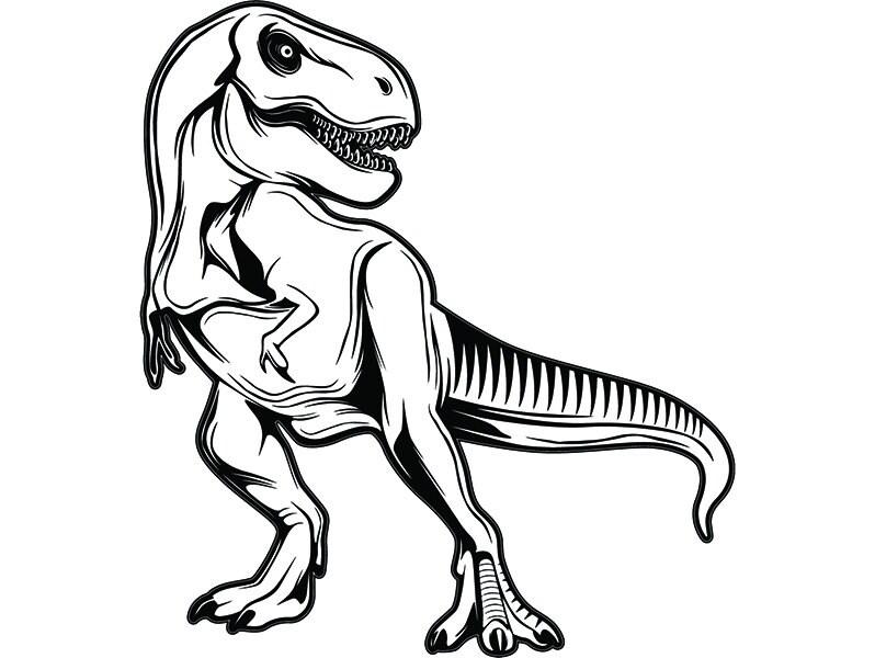 Tyrannosaurus Rex 7 Dinosaur T Rex Archaeology Fossil